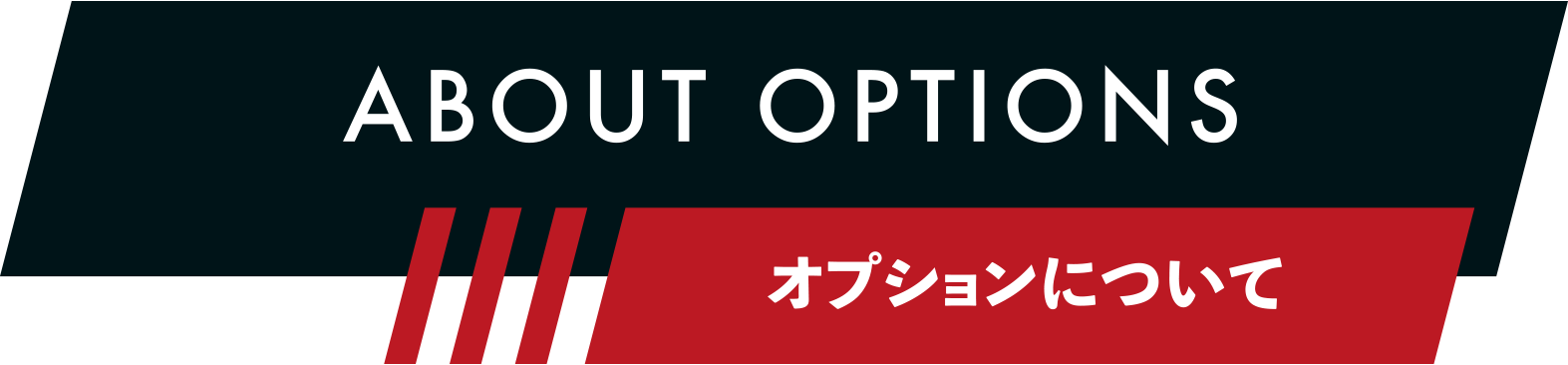 ABOUT OPTIONS オプションについて
